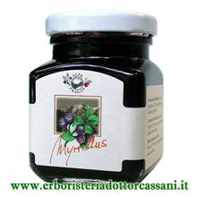 Composta di Mirtillo Nero 110g - 75% frutta