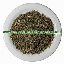 PIANTA OFFICINALE Salvia foglie tag.tisana ( Salvia Officinalis L.) 100 grammi
