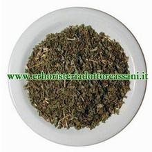 PIANTA OFFICINALE Salvia foglie tag.tisana ( Salvia Officinalis L.) 500 grammi