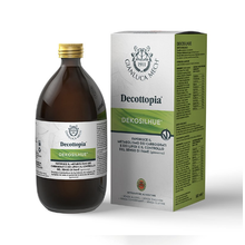 DECOTTOPIA DekoSilhue 500 ml