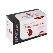 Fungi Royal Mix